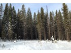 Land for sales at Aspen Groves Subdivision Lot 35 Silverado Trail   Big Sky, Montana 59716 United States
