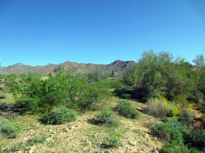 Terreno for sales at Four Easy-build Lots Or One Large Lot In The Sought-After Shea Corridor 13102 E Cochise Rd #0 Scottsdale, Arizona 85259 Estados Unidos