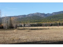 Terreno for sales at Hidden Meadows Preserve 906 Preserve Parkway Lot 19   Whitefish, Montana 59937 Estados Unidos