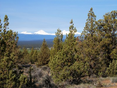 Land for  at Powell Butte Acreage with Views! TL 01400 SW Reif Road Powell Butte, Oregon 97753 United States