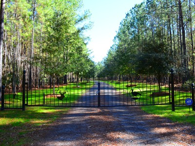 Farm / Ranch / Plantation for sales at Pineover Farm 1148 Trio Road Pineover Farm Andrews, South Carolina 29510 United States