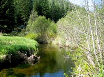 Land for sales at Creek Front Lots near Priest Lake Lot 16 Gordon Drive   Priest Lake, Idaho 83856 United States