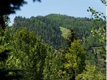 Condominium for sales at Apen Alps Unit 16 DESC: aka Unit 116 700 S. Ute Ave #116   Aspen, Colorado 81611 United States