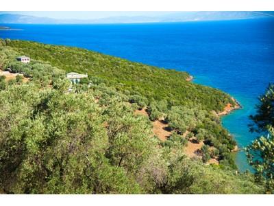 一戸建て for sales at Sea Front Mansion in Pelion Pelion, Volos, Magnesia  Other Attiki, アッティキ 37012 ギリシャ