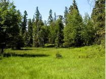 Land for sales at Glacier Ranch Phase 3 4 & 5 Glacier Ranch Subdivision   Kalispell, Montana 59901 Vereinigte Staaten