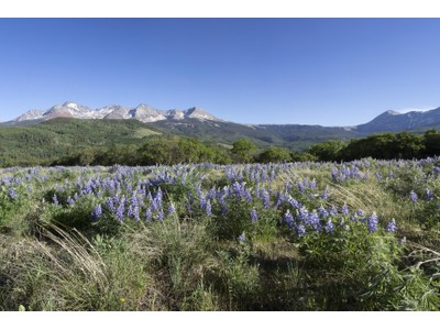 Terreno for sales at Tract 8 & 9 Little Cone Ranches TBD Porcupine Road Tract 8 & 9 Little Cone Ranches Telluride, Colorado 81435 Estados Unidos
