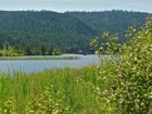 Land for sales at Dover Bay Waterfront Reedwalk Neighborhood 623 Ames Way Dover, Idaho 83825 United States