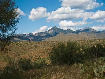 Vivienda unifamiliar for sales at Gorgeous Santa Fe Home 74 Camino Tango Tubac, Arizona 85646 Estados Unidos