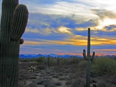 Terreno for sales at Fabulous Private Homesite In Upscale Gated Community Of Pinnacle Peak Place 25367 N 89th St #6 Scottsdale, Arizona 85255 Estados Unidos