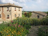 Property Of Country estate in Chianti region