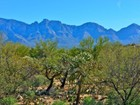 Terrain for sales at Amazing Views from One Acre Lot in Guard-Gated Estates at Honey Bee Ridge 650 E Crescent Moon Drive #81 Oro Valley, Arizona 85755 États-Unis