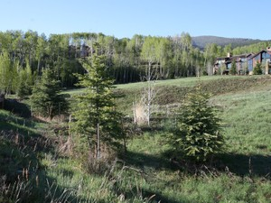 Additional photo for property listing at Lot 16 Two Creeks 841 Serviceberry   Snowmass Village, Colorado 81615 United States