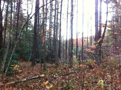 Land for sales at Gunter Estate Off of Whiteside Cove Road Cashiers, North Carolina 28717 United States