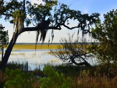 Land for sales at 330 Moon Tide 330 Moon Tide Lane Kiawah Island, South Carolina 29455 United States