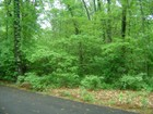 Land for sales at Forest Beach 18342 Forest Beach Dr  New Buffalo, Michigan 49117 Vereinigte Staaten