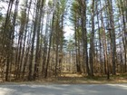 Land for  sales at Parcel on VT Route 100    Jamaica, Vermont 05343 United States