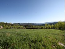 土地 for sales at Lot 16 Two Creeks 841 Serviceberry   Snowmass Village, 科罗拉多州 81615 美国