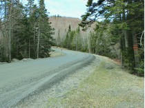 Terreno for sales at Large Forested Property Roxbury Mountain Road   Warren, Vermont 05674 Stati Uniti