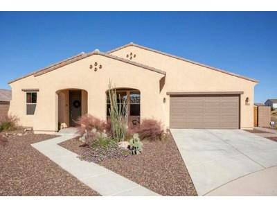 独户住宅 for sales at Wonderful Upgraded Home On A Large Cul-De-Sac Lot in Beautiful Community 20982 E Waverly Drive   Queen Creek, 亚利桑那州 85142 美国