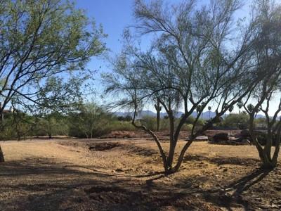 Casa para uma família for sales at Very Rare 3.5 Acre Parcel In Paradise Valley 7815 N Ironwood Dr Paradise Valley, Arizona 85253 Estados Unidos