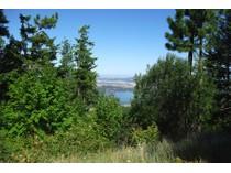 토지 for sales at Water Views of Liberty Lake and Mountains S Idaho Road   Post Falls, 아이다호 83854 미국