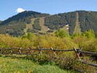 地產 for sales at Legacy Development Opportunity Jackson Hole Forest Service Parcel  Town Of Jackson, 懷俄明州 83001 美國