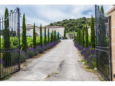 Vineyard for sales at PROPRIETE OENOTOURISTIQUE AVEC VUE PANORAMIQUE  Montpellier, Languedoc-Roussillon 34000 France