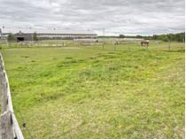 Granjas / Hacienda / Platanción for sales at Grass Stables 2000 Davis Dr W   Newmarket, Ontario L3Y4V9 Canadá