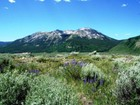 Land for  sales at 1233 Skyland Drive - Lot S-178    Crested Butte, Colorado 81224 United States