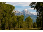 Terrain for  sales at More Than 70 Acres on the Snake River    Jackson, Wyoming 83001 États-Unis