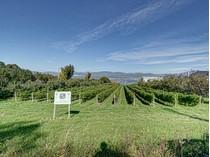 포도원 for sales at Wine and cider estate / Vignoble et cidredrie 3785, ch Royal   Sainte-Famille, 퀘벡주 G0A3P0 캐나다