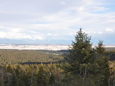 토지 for sales at 10 Acres with Panoramic Views 251 Paradise Heights Way Kalispell, 몬타나 59901 미국