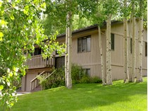 Einfamilienhaus for sales at Vacation Home in the Trees 107 Meadow Lane   Snowmass Village, Colorado 81615 Vereinigte Staaten