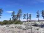 Land for sales at Incredible Views 2347 E Spring Valley RD  Williams, Arizona 85046 United States