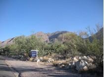 토지 for sales at Lush Buildable Gentle 1.27 Acre Custom Homesite 6550 N Kolb Road   Tucson, 아리조나 85750 미국