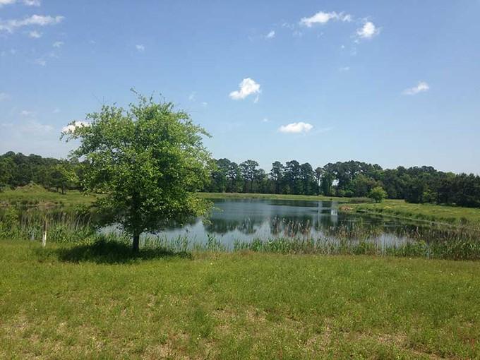 Land for sales at 0 River Road  Johns Island, South Carolina 29455 United States