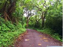 Terrain for sales at Create your own Heavenly Hana! Ulaino Rd. #13   Hana, Hawaii 96713 États-Unis