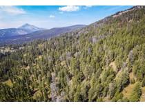 土地 for sales at Unique Meadow Village 40 Acres Upper Chief Joseph Trail   Big Sky, 蒙大拿州 59716 美国