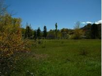 Terreno for sales at Privacy on the River 174 Twining Flats Road   Woody Creek, Colorado 81656 Estados Unidos