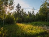 Property Of Premier Lot in Teton Pines