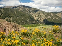 Land for sales at LRN Property 2 Lane Ranch North Property 2   Sun Valley, Idaho 83353 United States