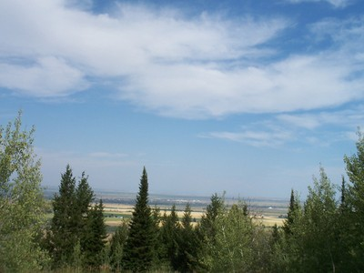 Land for sales at 41 Ac. Borders the Forest East Victor Government Parcel 2 sect 20 T4N R 46E Victor, Idaho 83455 United States