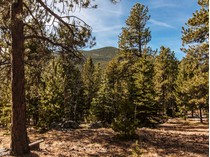 Terreno for sales at TBD Old Squaw Pass Road TBD Old Squaw Pass Rd   Evergreen, Colorado 80439 Estados Unidos