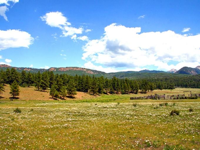 Terreno for sales at Eppich Ranch 12911 CR 44 Mancos, Colorado 81328 Estados Unidos