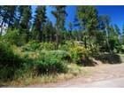 Земля for sales at Sunnyside View/Building Lot 93 Farkle Flats Sandpoint, Айдахо 83864 Соединенные Штаты