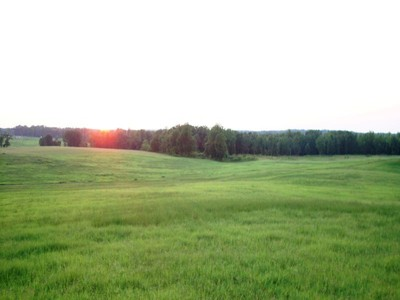 Terrain for sales at Equestrian Estate Lot 1539 Bear Creek Road Lot #1 Moreland, Georgia 30259 États-Unis