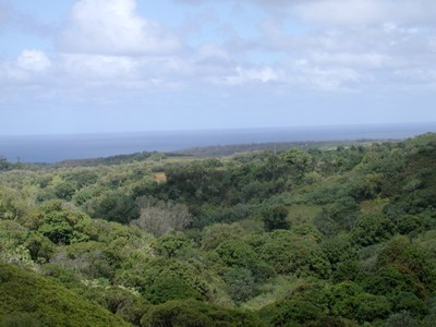 Terreno for sales at Tropical Waterfall Estate Kuhio Hwy.  Kilauea, Hawaii 96754 Estados Unidos