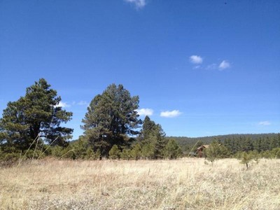 Land for sales at Gorgeous Four Acre Lot 8655 N Snowbowl Ranch RD Flagstaff, Arizona 86001 United States