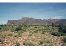 Terreno for sales at Superb .58 Acre Lot In Superstition Mountain Estates 7604 E Usery Pass Trail #14   Gold Canyon, Arizona 85118 Stati Uniti