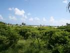 Land for  sales at Corales 36 36 Corales   Punta Cana, La Altagracia 23302 Dominican Republic